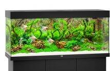 Magazine Chic - Aquarium Juwel 240